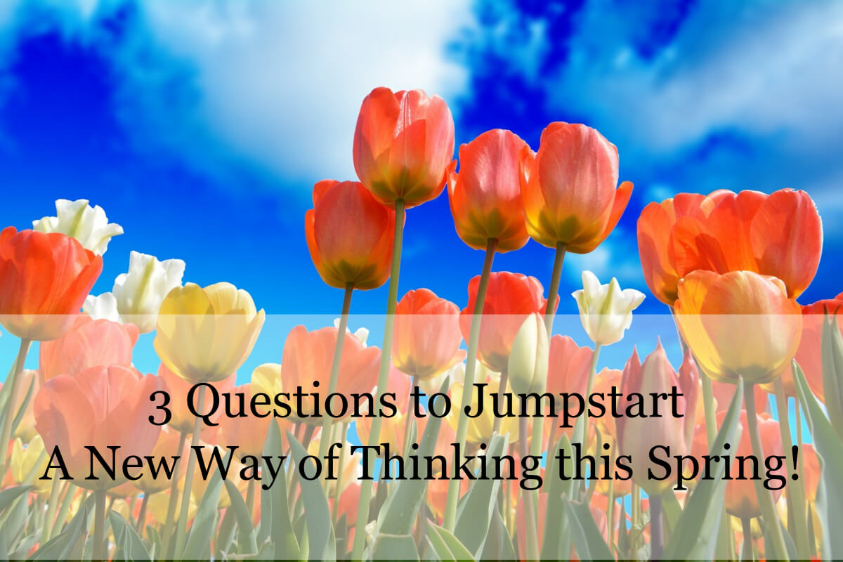 3questionsthispring