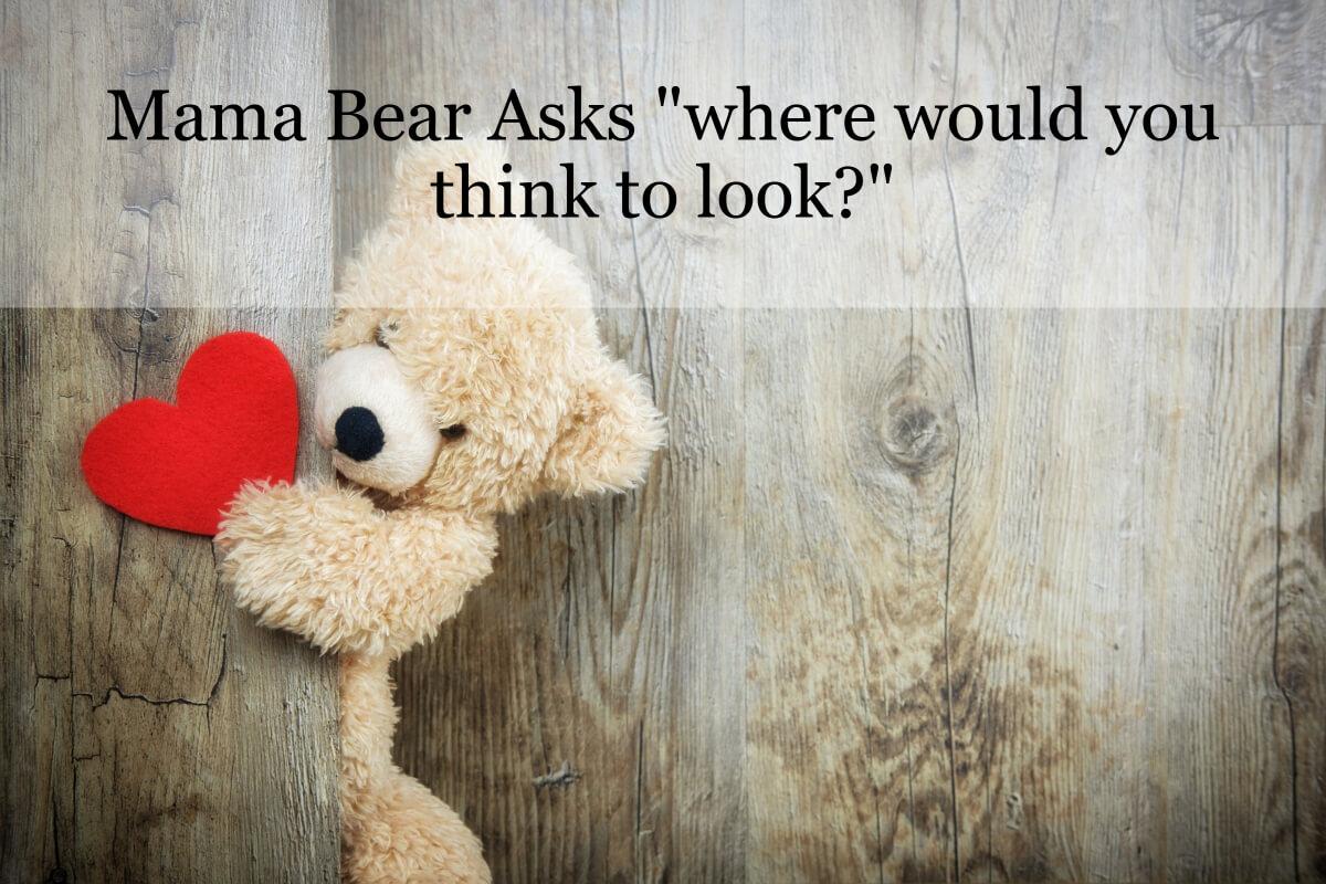 mamabear ask